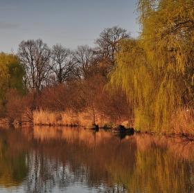 rybník Bezruč v Jistebníku