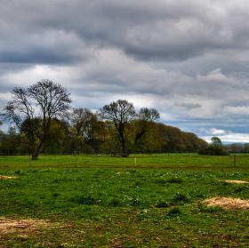 Apríl na pastvinách