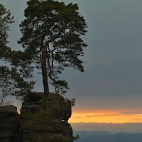 Podvečer v Prachovských skalách