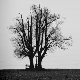 Osamělý pomník