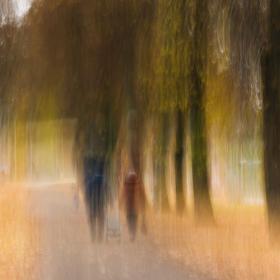 Autumn...of life (Walk to Kaufland)