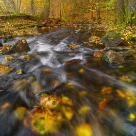 Podzim na Zbirožském potoce