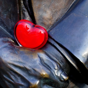 Srdce v dlaních