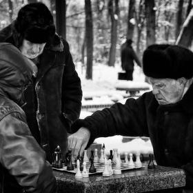 Шахматы под снегом