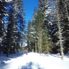 SNOWá krajina