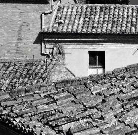 Krása starých střech