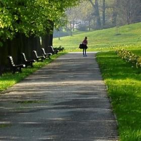 Ostravský park