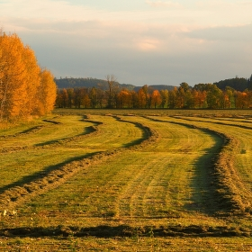 Podzimní úklid