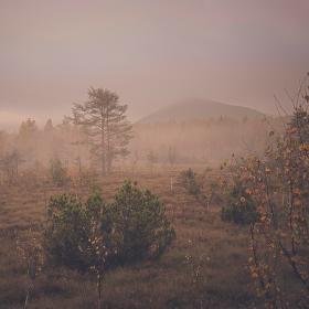 Šumavou