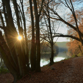 Podzimní a podvečerní Sázava