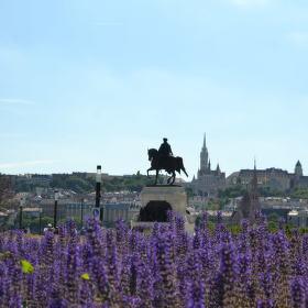 Budapešťský kontrast