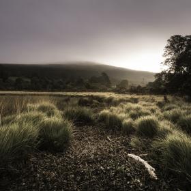 Vale of Glendalough - svítání