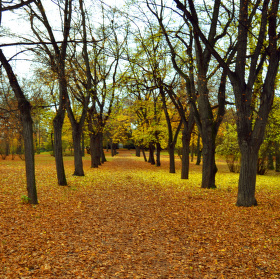 Podzim 2013