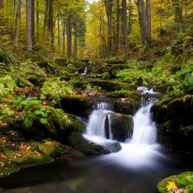 Na Skalním potoku