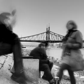 U Dunaje to žije