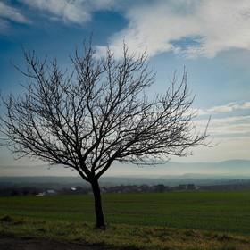 mlhy pod Hostýnskými vrchy
