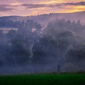 Večerní mlhy