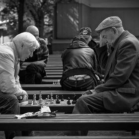 Šachysté v amfíku