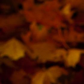 Zlatavá - podzimní...