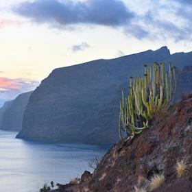 obrázky z Tenerife (3)