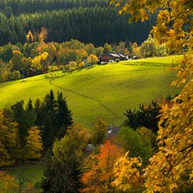 Barvy podzimní Šumavy