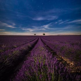 Velký vůz v Provence