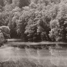 Odpoledne u řeky