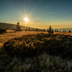 Zlatavý podzim na hřebenech Krkonoš