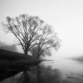Mlha přede mnou,mlha za mnou .