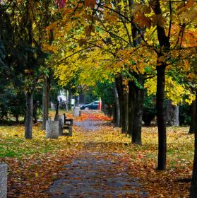 Jesenný chodník