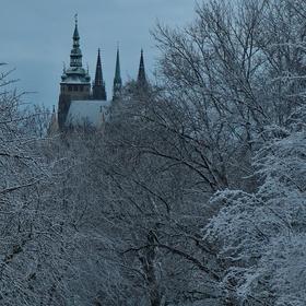 Pražský hrad z Letenských sadů