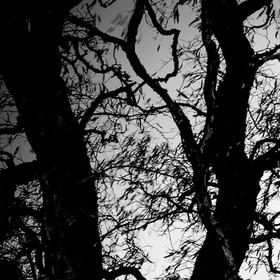 Navždy s bolestí a sám uvězněný v temnotách.