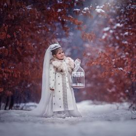 Princezna z ledového království