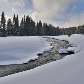 Modravská zima