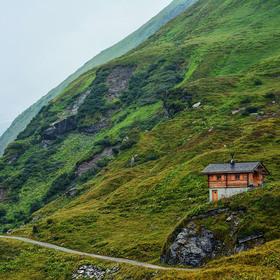 Život v Alpách