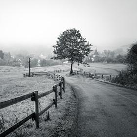 Mlhavé údolí