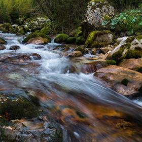 Lepenjica-Julské potoky