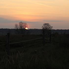 Západ slunce u obory divokých koní