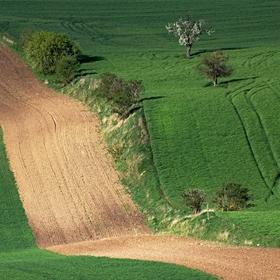 linie v krajině
