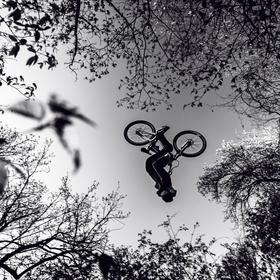 Backflip mezi stromy