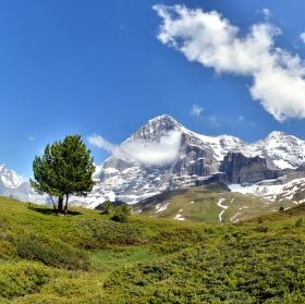 Švýcarsko. Na cestě z Jungfraujoch do Grindelwaldu.