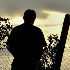 Přes plot
