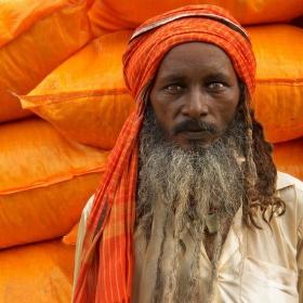oranžová india