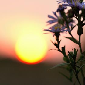 Pri zapadu slunce