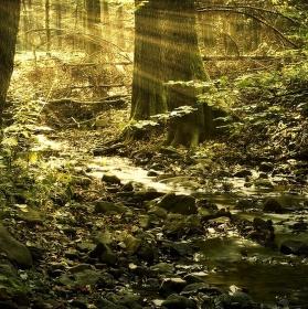 tajomný potok