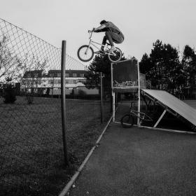 Doyle over the fence