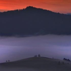 Ostrov v hmle
