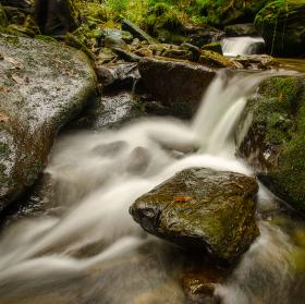 Javoří potok