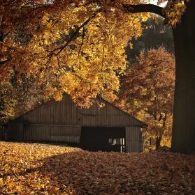 Podzim u Svratky