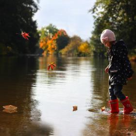 Vzpomínky na podzim